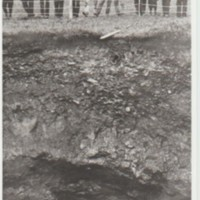 Material relating to subsidence at Compstall :  Coal Pit Collapse : 1907