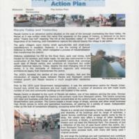 The Action Plan : Marple Partnership : 2003