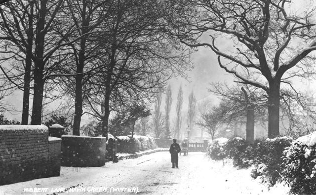 Winter Hibbert Lane
